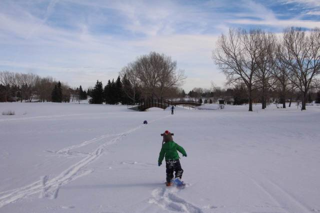 learning to snowshoe on a golf course