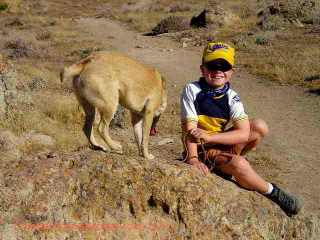 hike with a dog