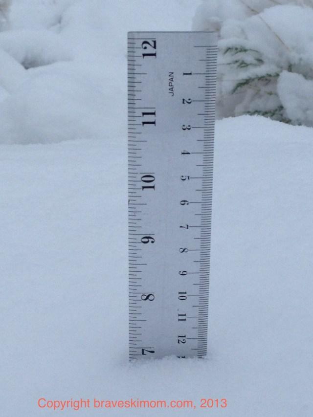 snow measurement ruler