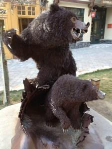 bears mammoth California