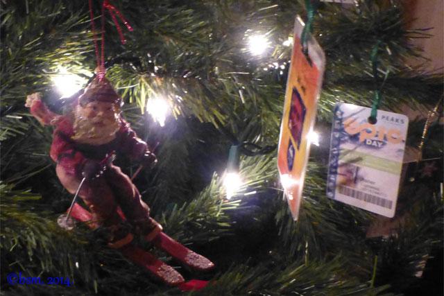 ski pass christmas ornaments