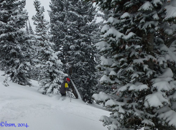 ski powder alta utah