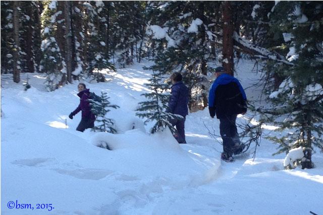 snowshoe trail snowmass