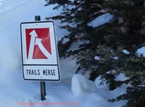 Ski Season Safety Tips from the Brave Ski Dad