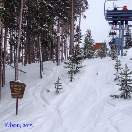 usfs and skiing