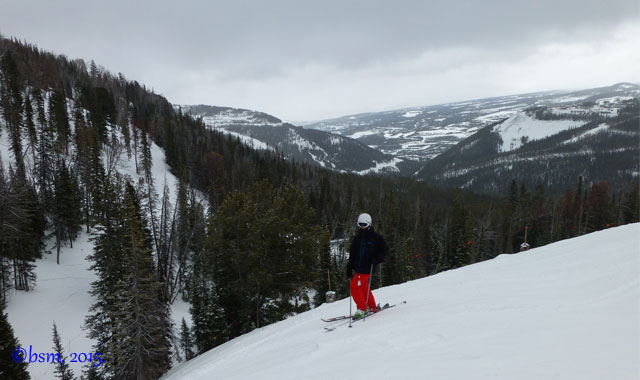 shedhorn big sky montana