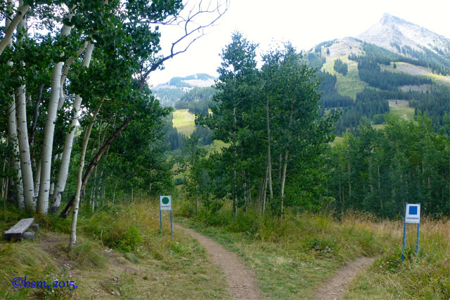 clear progression xc bike trails crested butte