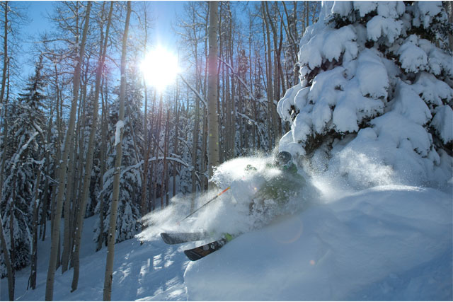tree skiing powderhorn