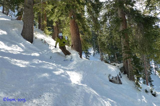 skiing trees at solitude utah