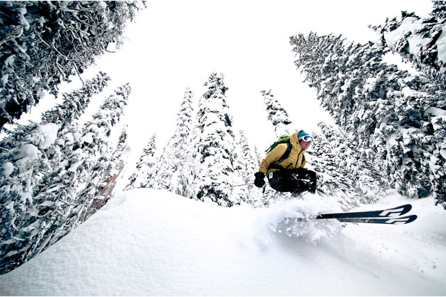 whitewater bc tree skiing