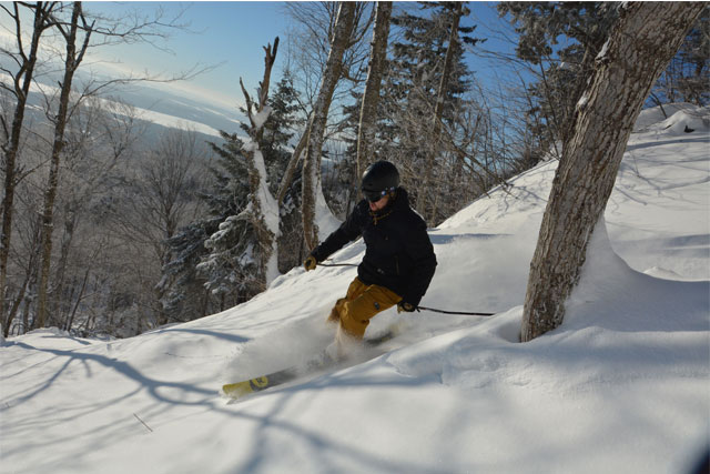 mont-orford-treeskiing
