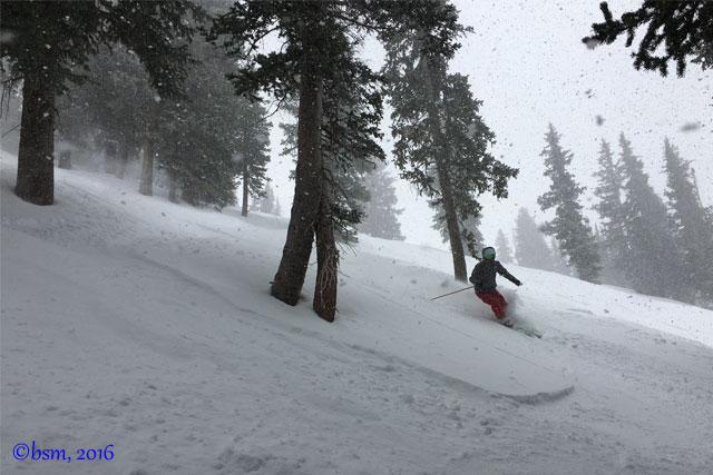 alta new snow