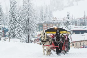 silver star sleigh ride