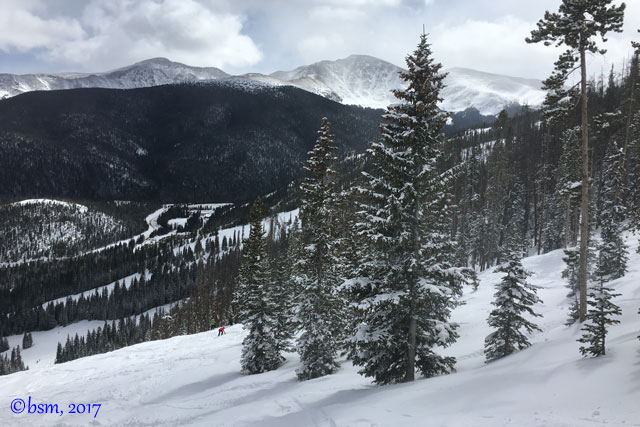 winter park view