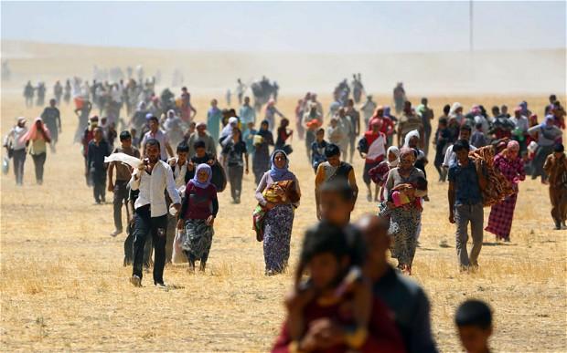 yezidi rescue rojava ypg