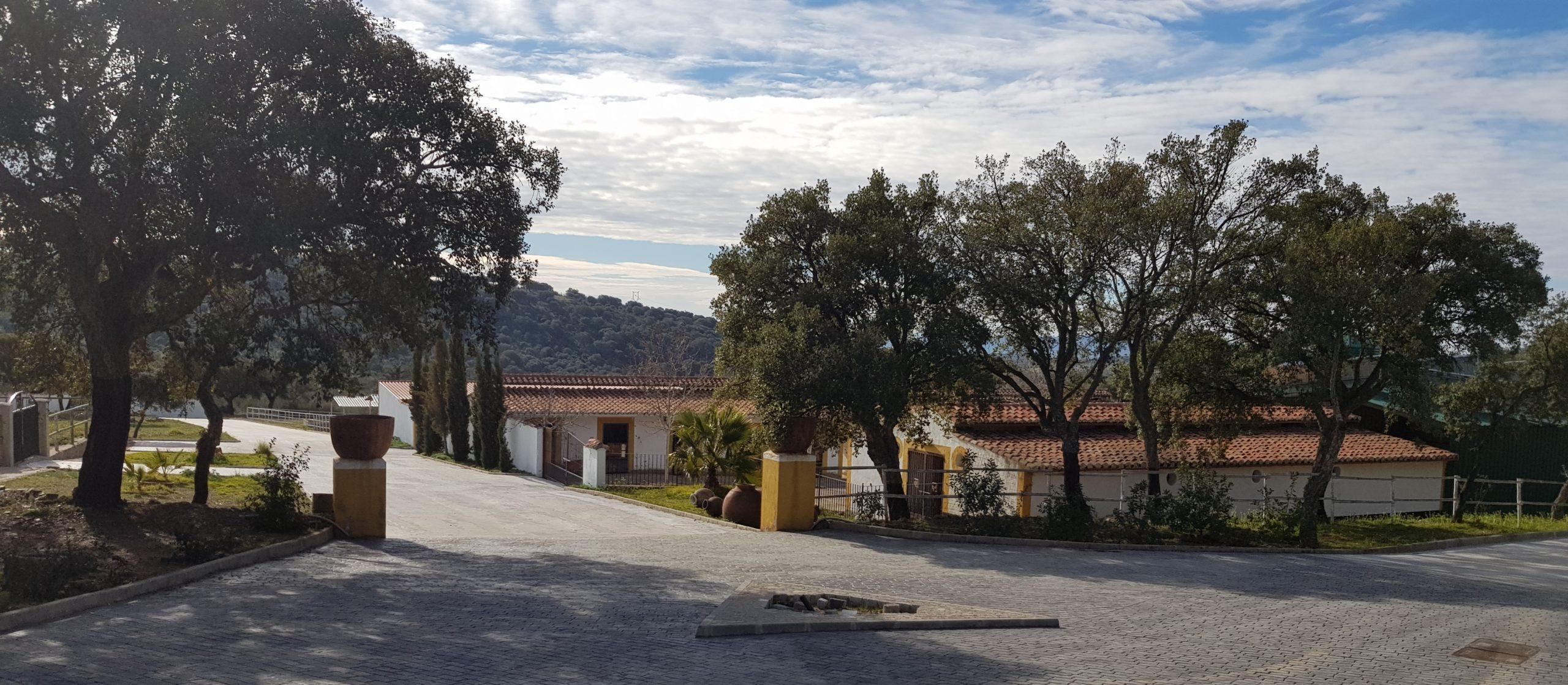 Resort Hipico El Hinojal (1) (6)