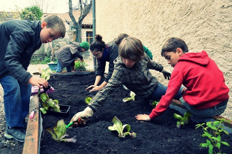 jardin 9
