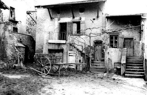 Les maisons vigneronnes en 1980