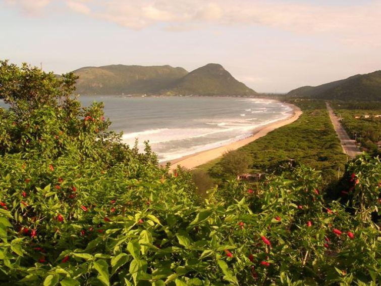 Armação Beach - Florianopolis