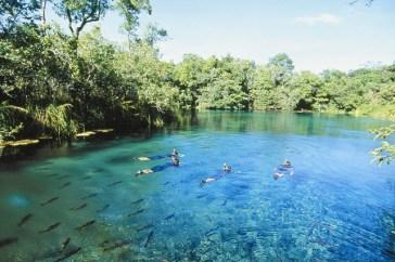 Floating in Rio Da Prata - Bonito
