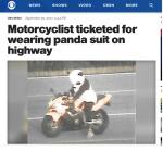 萬聖節還沒到 美「熊貓騎士」上高速公路吃罰單