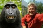 《中英對照讀新聞》No more monkeying around: 'monkey selfie' case settled 不再胡鬧:「猴子自拍」案和解收場
