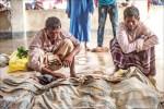 緬甸種族清洗 美籲中止軍售