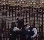 遊客面前攀白金漢宮大牆 女子遭警逮捕