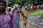 羅興亞叛軍宣布9日截止停火