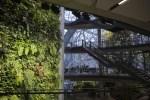 在雨林上班!「亞馬遜」 新辦公空間「生態圈」啟用