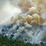 巴西科學界大聲疾呼保護雨林,巴西政府卻動用情報機構對付環保人士……