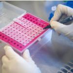 哥倫比亞官方澄清:出境無需出示新冠PCR檢測結果