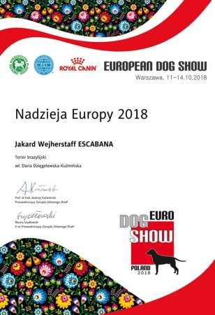 European Hope 2018