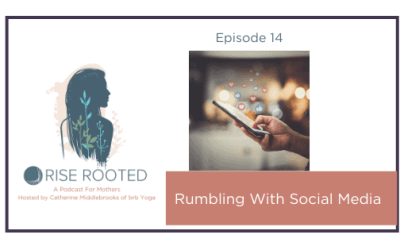 Ep. 14: Rumbling With Social Media