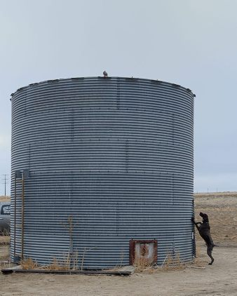 Chukar on top of the silo. We never did get that guy.