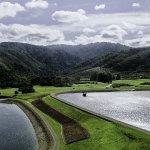Wellington - Twin Lakes