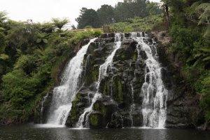 Owharoa Falls - The Coromandel
