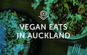 Vegan Eats in Auckland