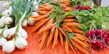 vegetables-wide