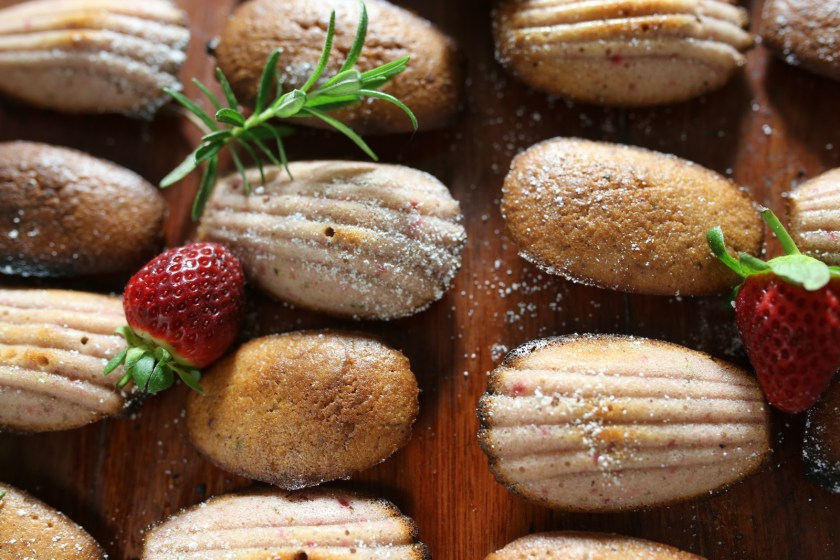 strawberry and rosemarry madeleines