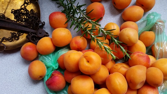 apricot and rosemary jam