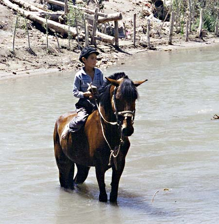 Boy in the Tuman River