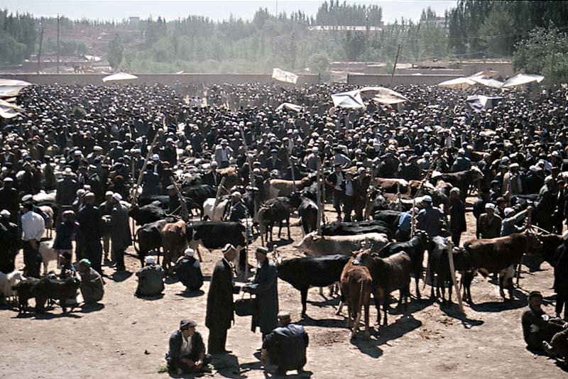 Crowd at the Animal Market, Kashgar Sunday Market