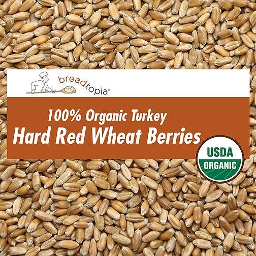 Organic Heirloom Turkey Red Wheat Berries  Breadtopia