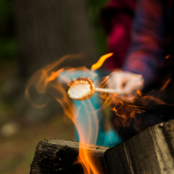 The Best Kid-Friendly Campgrounds in Michigan