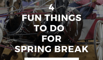 4 Fun Things To Do Over Spring Break