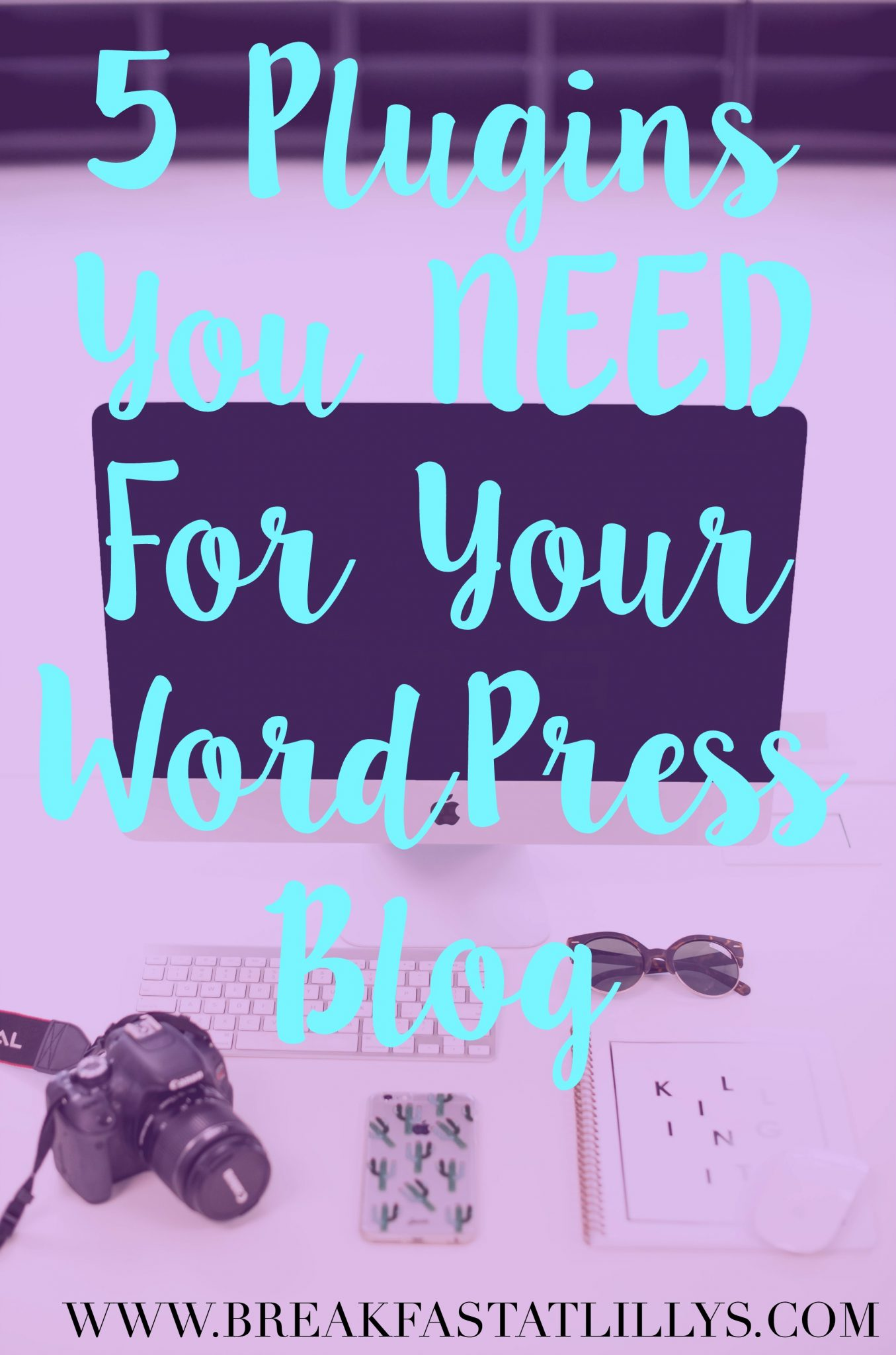 5 Plugins You Need for WordPress