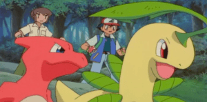 Pokemon 4Ever Bayleef and Charmeleon