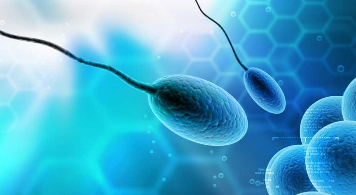 5-Important-Factors-That-Affect-Sperm-Quality-716x393