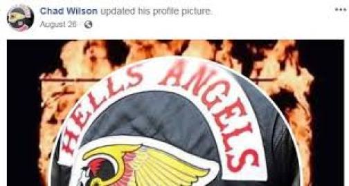Chad Wilson's profile picture